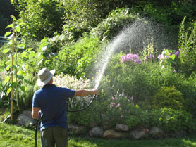 Marc watering the Windborne gardens