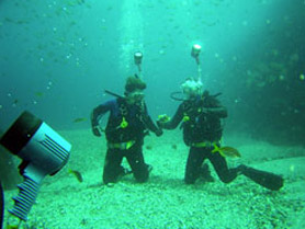 Mirja and Marc diving
